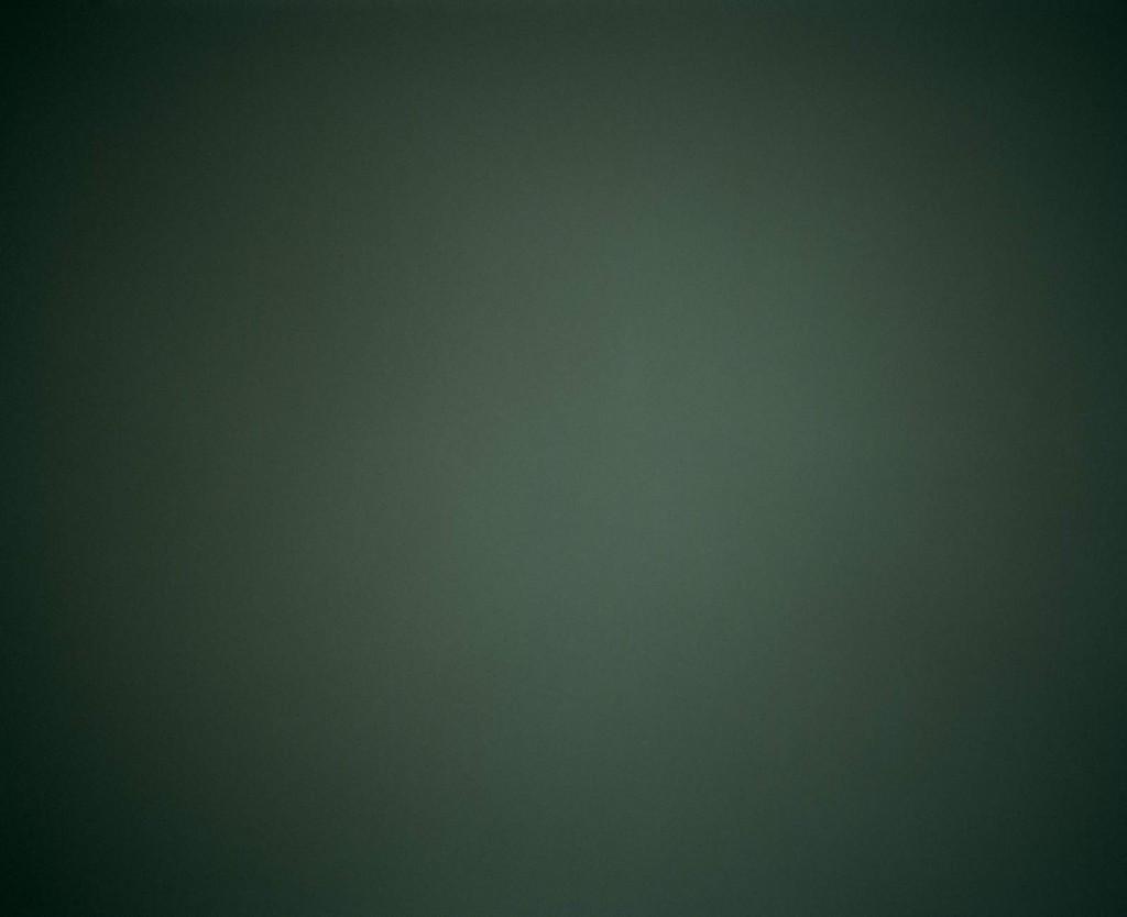 michael-schnabel-gruen
