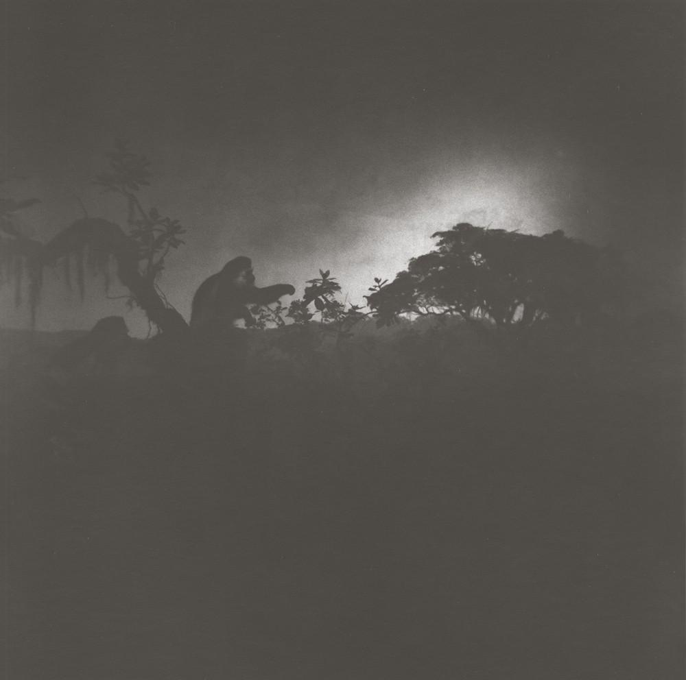gregor-toerzs-boy-on-safari-7