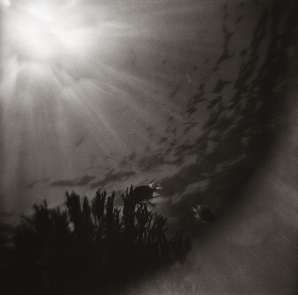 gregor-toerzs-ciel-lourd-4