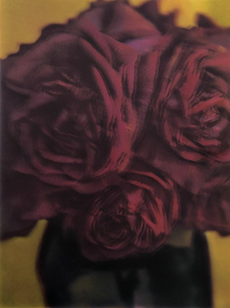 SM_F_138_les-roses_1998